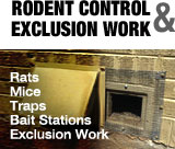 Rodent Control and Exclusion Work