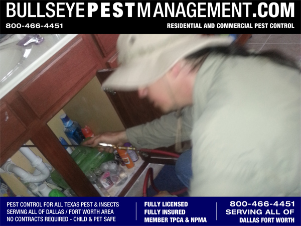 Bullseye Pest Management Pest Control Services by Owner / Operator Steve Moseley.