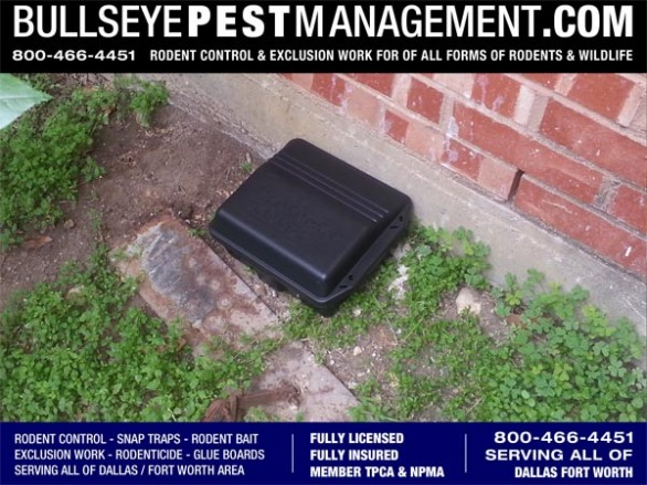 Rodent Control Bait Station by Bullseye Pest Management serving all of Dallas Fort Worth and surrounding areas.  Bullseye Pest's Rodent Bait has no secondary kill effects.  Bullseye Pest Management maintains a diligent record and schedule of bait stations so that neglect and poor bait maintenance are not a factor in your Pest Management.