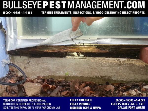 Get Wood Destroying Insect Reports by Bullseye Pest Management