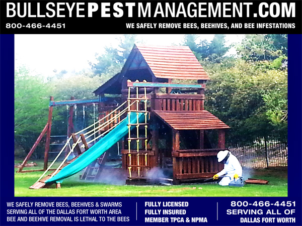 Bee Removal Wylie Texas - Bullseye Pest Management Owner / Operator Steve Moseley Removes Bees from a Residence Playhouse in Wylie Texas.