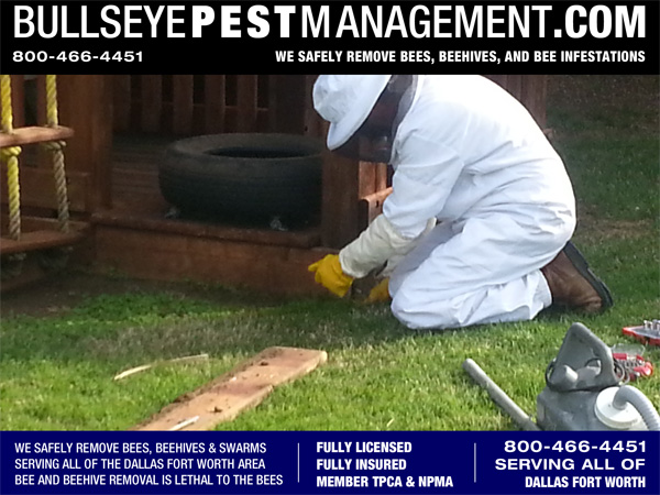Beehive Removal in Wylie Texas by Bullseye Pest Management.