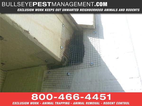 Bullseye Pest Management Performs Exclusion Work as Preventative Pest Management to keep out unwanted neighborhood animals and pests.