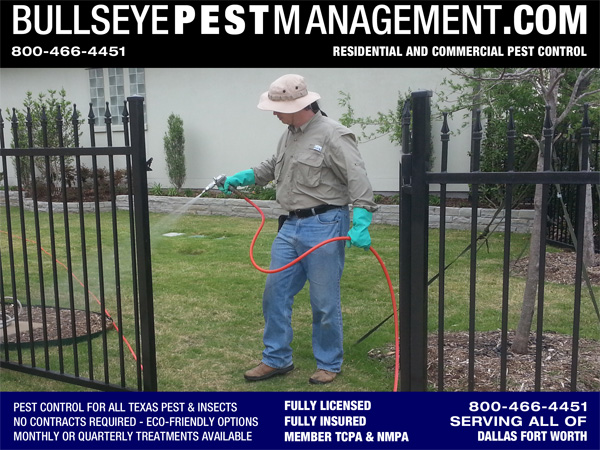 Pest Control in Frisco Texas by Bullseye Pest Management