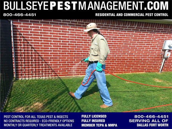 Pest Control in Mansfield Texas by Bullseye Pest Management