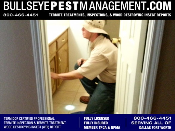 Bullseye Pest Management Inspects for Wood Destroying Insects (WDI) in Plano Texas