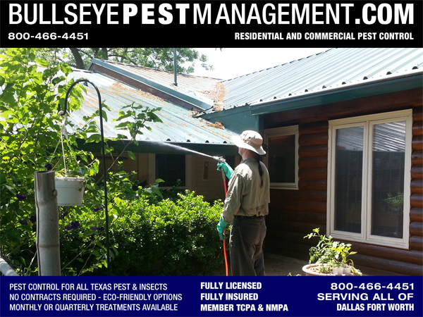 Pest Control in Red Oak Texas | Bullseye Pest Management Owner Steve Moseley sprays rotting leaves, twigs and natural debris for Carpenter Ants and other General Pest.