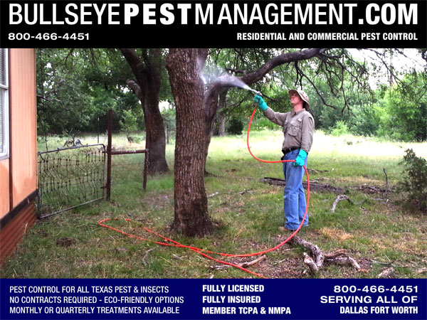 Pest Control in Arlington Texas by Bullseye Pest Management show here spraying trees and wooded areas for termites and carpenter ants in addition to general pest.
