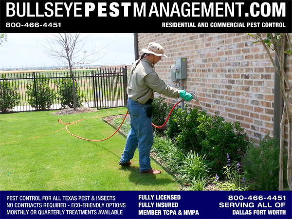 Pest Control in Frisco Texas by Bullseye Pest Management serving all of Dallas Fort Worth