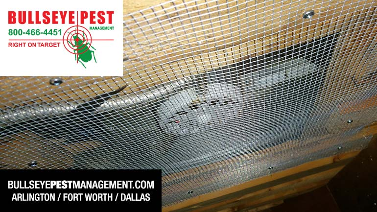 Bullseye Pest Management Exclusion Work Attic Fan After